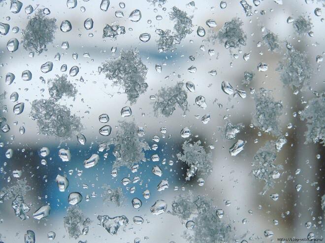 В ближайшие три дня Кострому может засыпать мокрым снегом