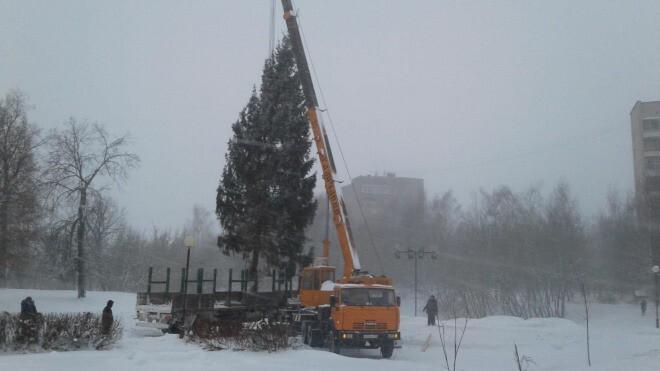 Где в Костроме установят новогодние елки?