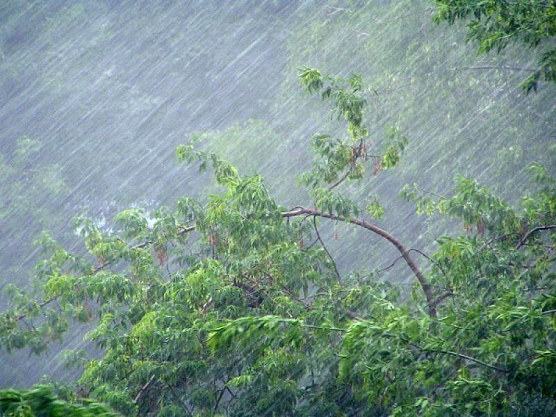 В Костроме и по области прогнозируется ухудшение погодных условий
