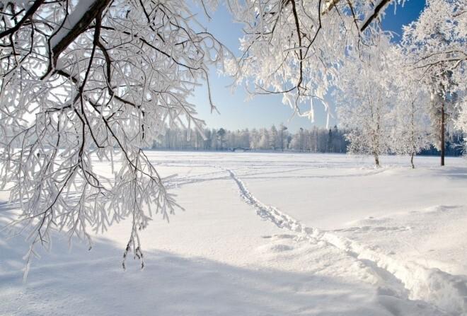 В Костроме ожидается похолодание