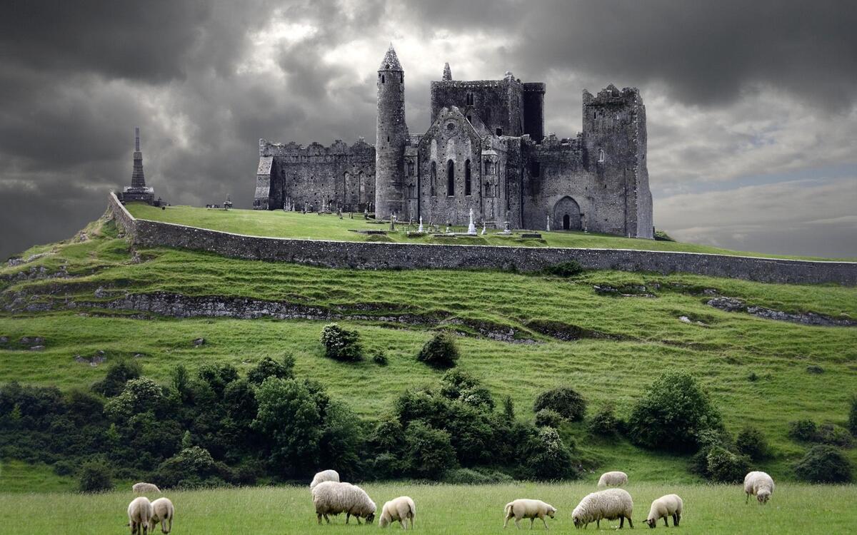 поля ирландии