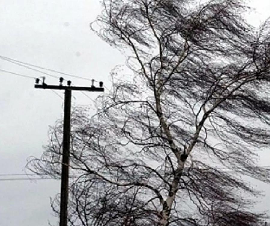 В Рыбинске прогнозируют сильный ветер