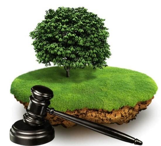 Приобретение земли с выгодой для бизнеса