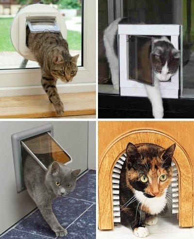 виды дверцы  для кошки