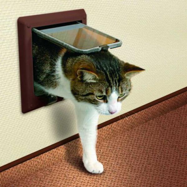дверца для кошки в стене
