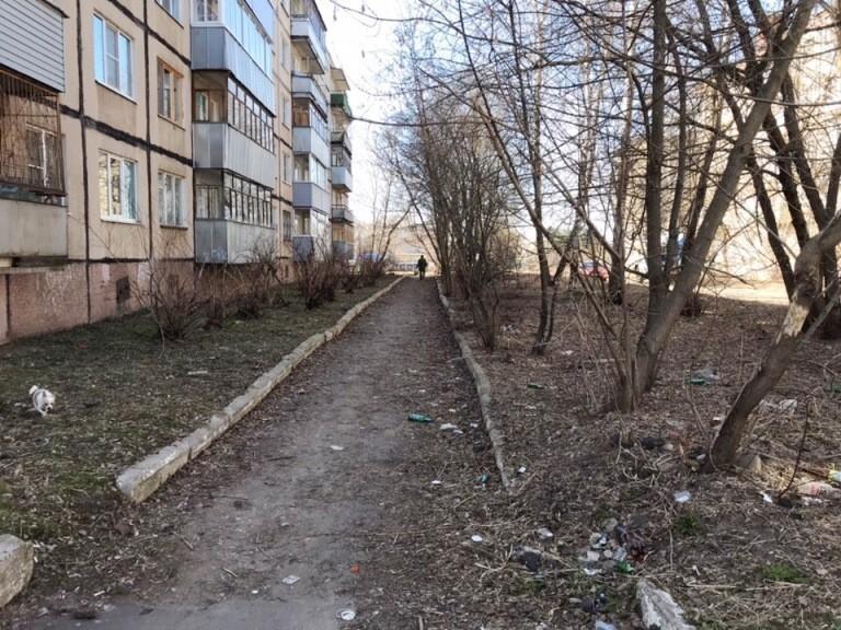 В Рыбинске в рамках субботника проведут вырубку кустарника в микрорайонах