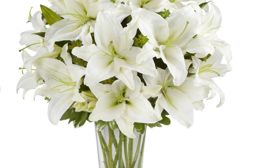 ваза для высоких цветов