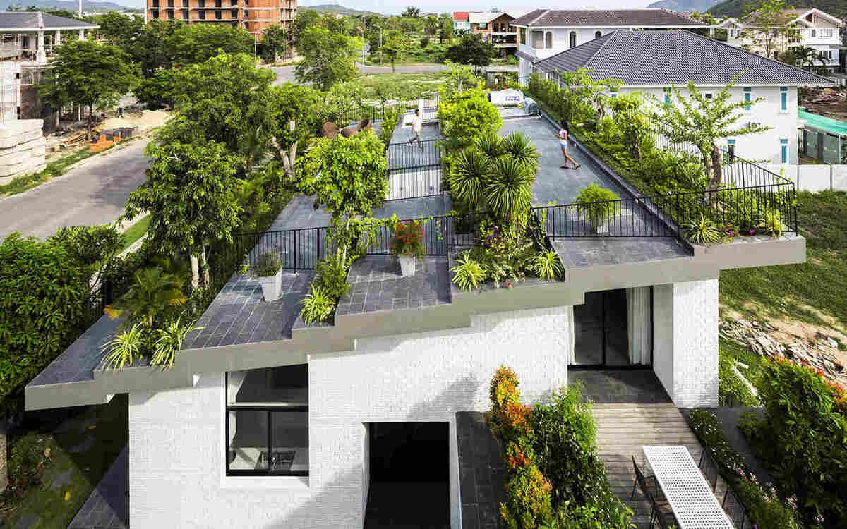сад на крыше в городе