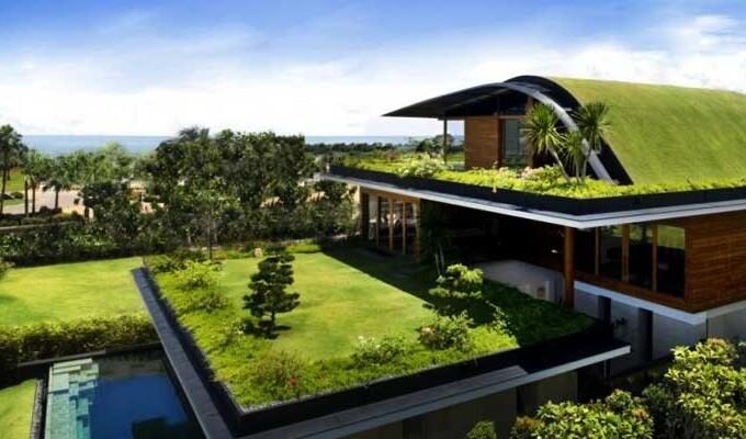 Зеленые крыши в эко-строительстве и их преимущества