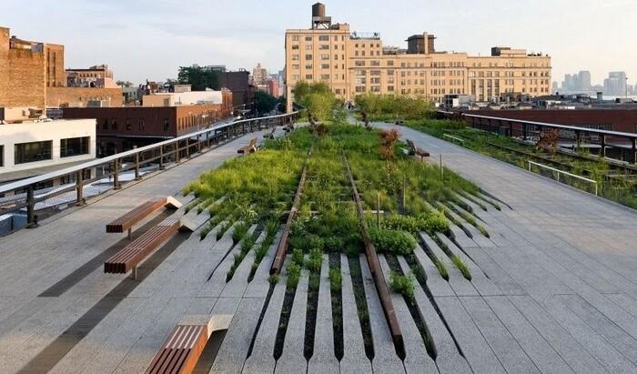Роль ландшафтных архитекторов в городской экологии