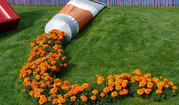 Ландшафтное искусство: «сбежавшие» цветы
