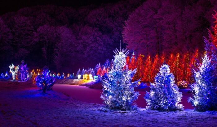 Рождественская сказка в ботаническом саду Денвера