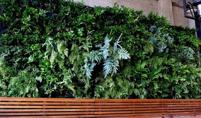 Идея вертикального сада