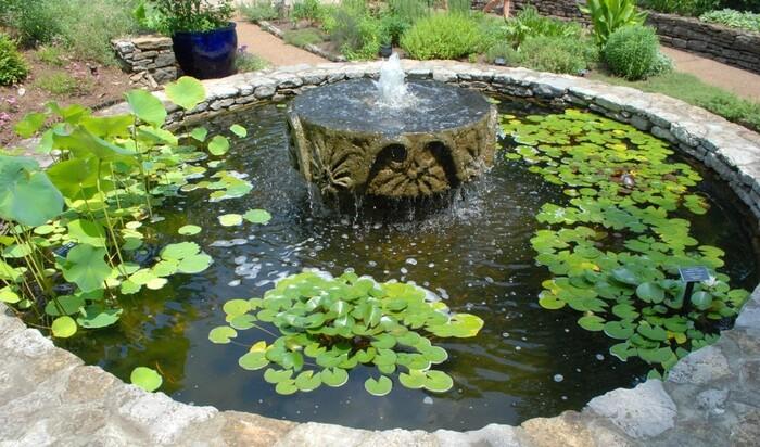 Как организовать настоящий сад в маленьком пруду?