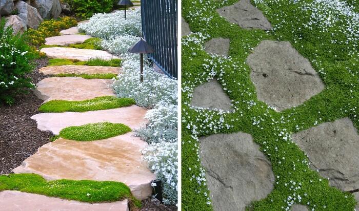 12 оригинальных идей: мощеные дорожки и лестницы в саду