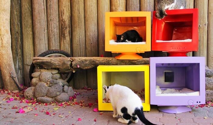 Благотворительная акция: дома для кошек из старых мониторов