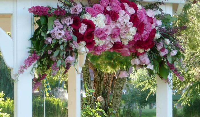 4 флористические ошибки, которые вы можете совершить