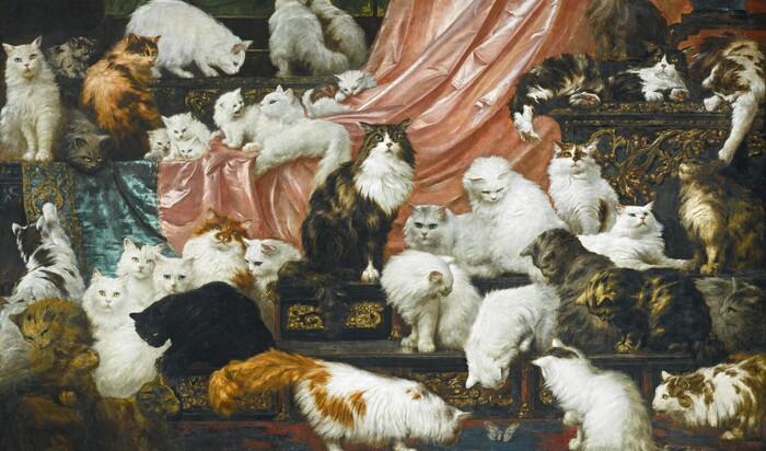 42 кота за 826 000 долларов. Всё ради искусства