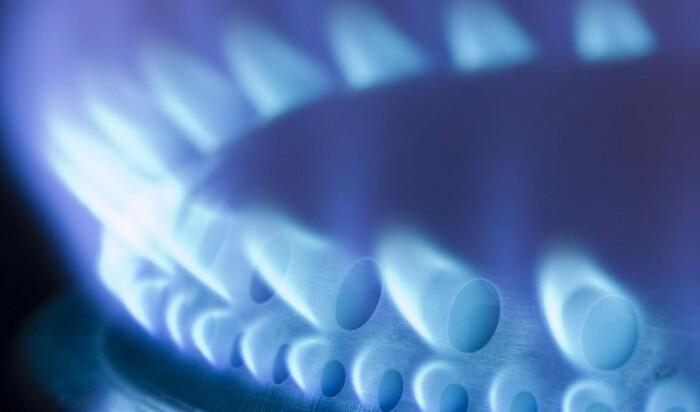 Газовая или электрическая плита – выбираем кухонную плиту