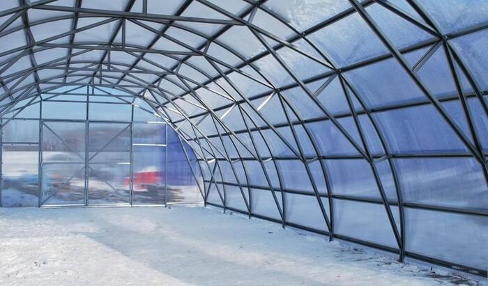 Теплицы на стальном каркасе: преимущества и недостатки