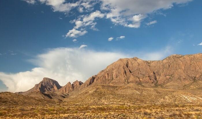 Ландшафтный дизайн в экстремальных условиях: штат Техас
