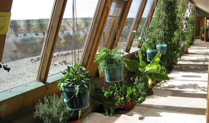 Зимние сады: самые основы садоводчества