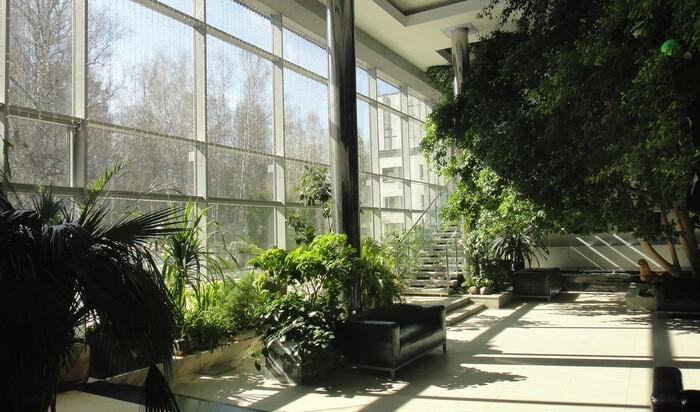 Как совместить зимний сад и жилое пространство