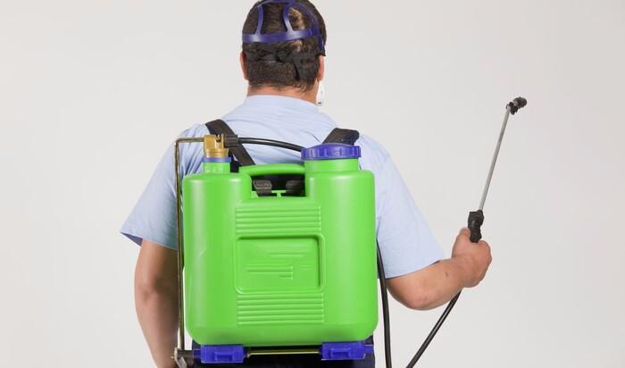 Советы для экологически безопасной дезинсекции дома