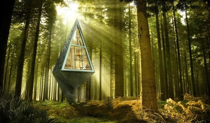 Лесной пригород населяется изолированными домами, похожими на деревья