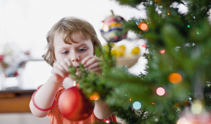 Какие виды рождественских деревьев продают в России?