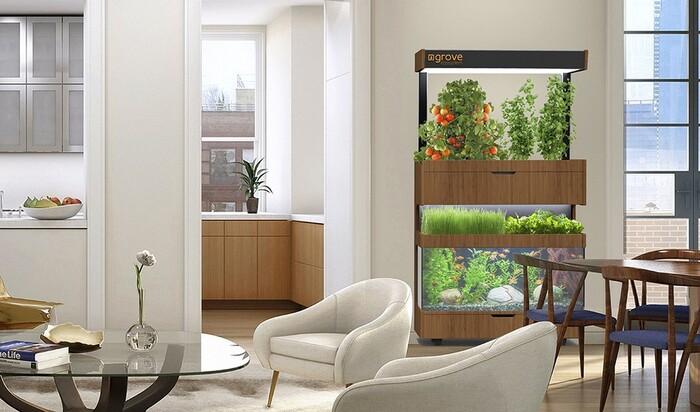Экосистема в квартире – и своя дача больше не нужна