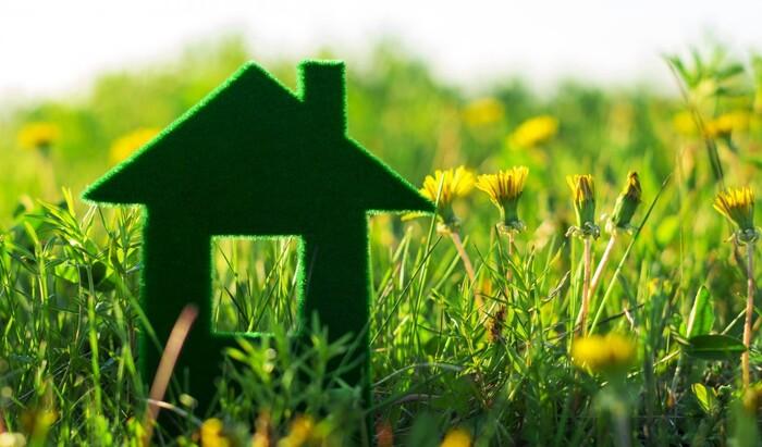 Как разумно использовать природные богатства при строительстве и перепланировке дома
