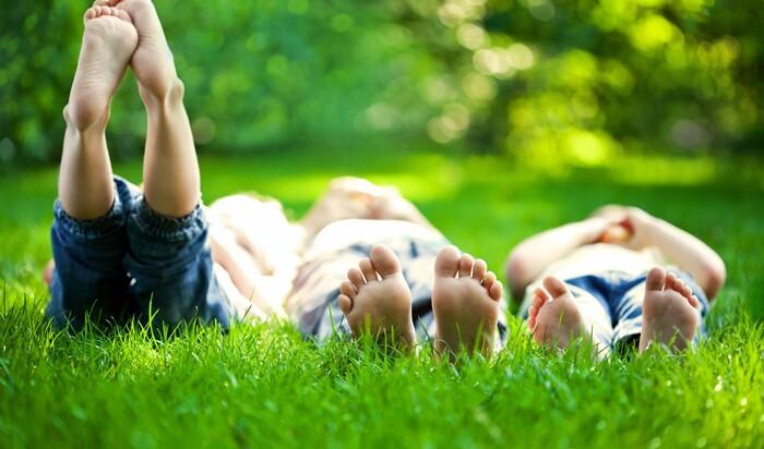 Идеальный газон: оформление гладкого травяного полотна