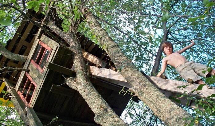 Как построить домик на дереве? Мой Дом отвечает на частые вопросы