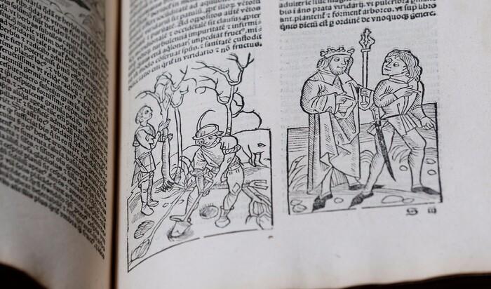 Старейший учебник по садоводству и земледелию Ruralia Commoda