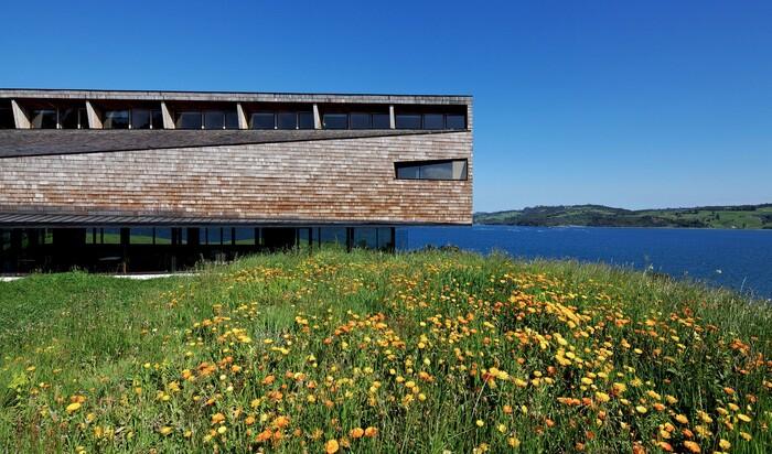Эко-отель Refugia в Чили. Уединённое место для ценителей тишины