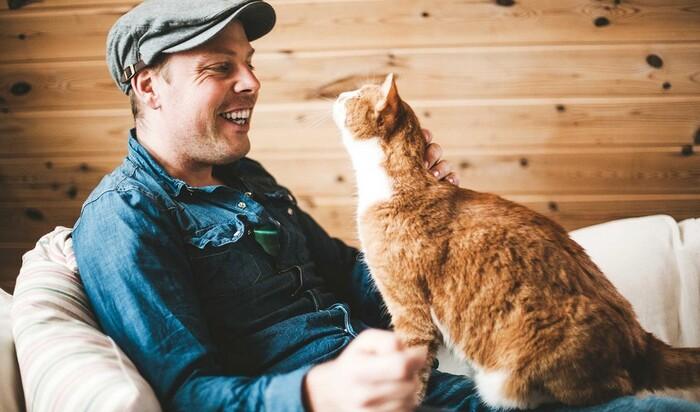 Особенности кошачьего мышления или секреты успешной дрессировки