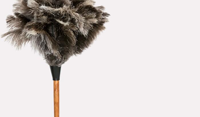 Знали ли вы, что прибираться можно неправильно? Пять ошибок при вытирании пыли