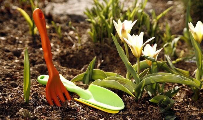 Садоводу и огороднику на заметку. Работы на даче в мае