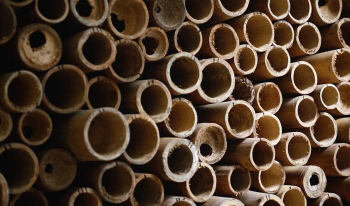 Прочные и дешевые бамбуковые волокна могут заменить сталь