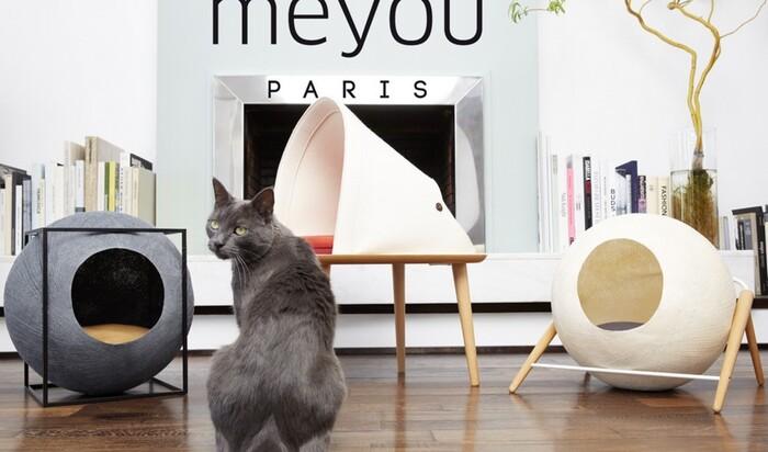 Кошачья мебель от Meyou - стильно, комфортно, экологично