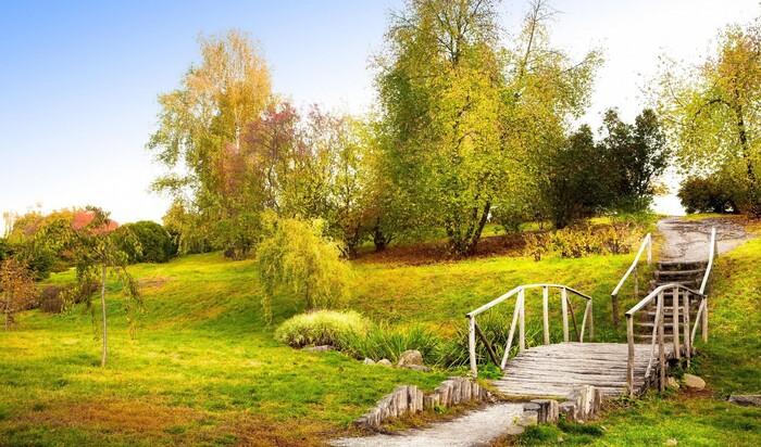 На радость садоводам: осень – не конец посевного периода