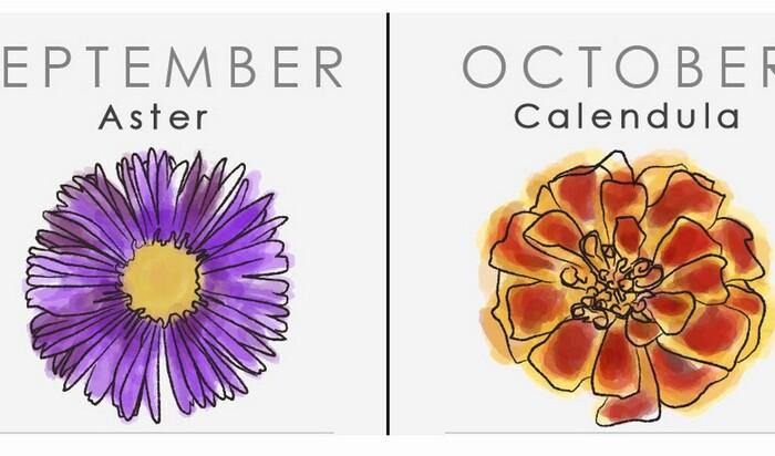 Язык цветов: цветочный гороскоп для лучшего в мире букета на день рождения