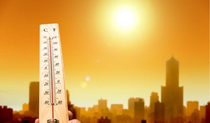 Жара и засуха: как помочь себе и своему дому в периоды экстремально высоких температур