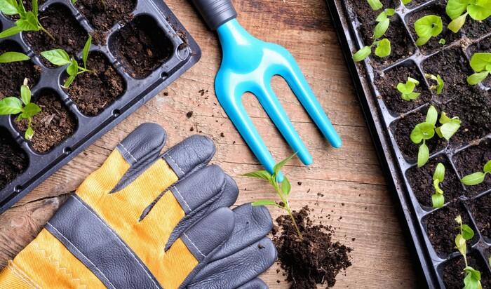 Ничто земное им не чуждо: знаменитости, увлекающиеся садоводством