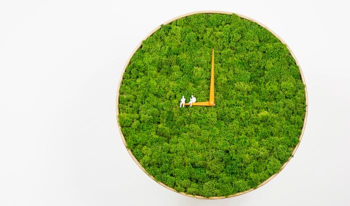Часы из 2 килограммов мха от Пола Ноктуку для озеленения в интернете