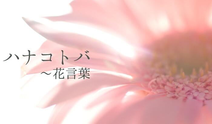 Флориография или Ханакобота: любителям цветов на заметку