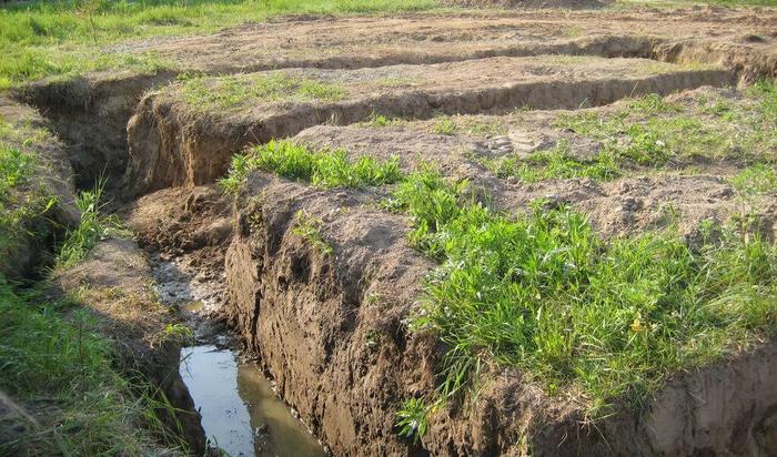 Особенности строительства на территории с близкими грунтовыми водами