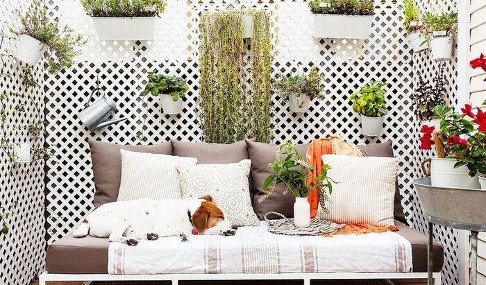 Как сделать место для собаки на балконе? Несколько идей