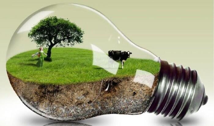 Альтернативные строительные материалы — забота об экологии